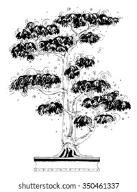 vector simple black on white drawing - BONSAI - leaves and circles