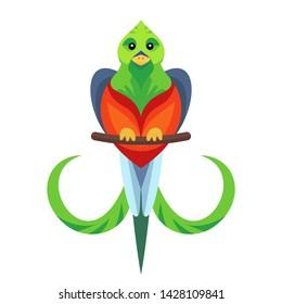 Vector simple flat quetzal bird icon symbol of Guatemals