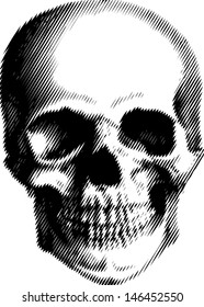 vector simple illustration with black and white skull, best for silk-print on t-shirt
