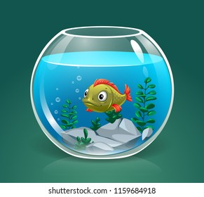 vector single fish swimming in transparent round glass bowl aquarium with stones realistic image print illustration
