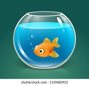 vector single goldfish swimming in transparent round glass bowl aquarium realistic image print illustration