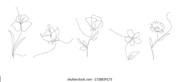 vector single line art flowers set, simple illustration
