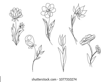 vector single line drawn set of flowers, outline illustration