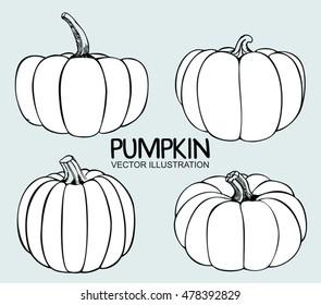 Vector Single Sketch Pumpkin. Doodle pumpkins. Hand drawn ink illustration.