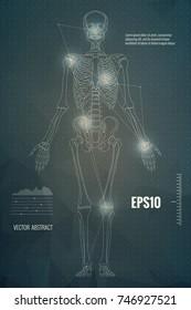 Vector skeleton scientific medical educational background