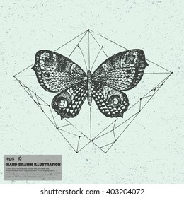 Vector sketch of butterfly. Hand drawn illustration in graphic style.