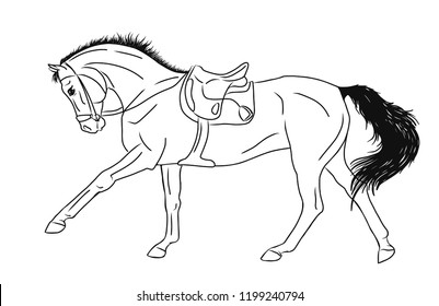 A vector sketch of a cantering horse.