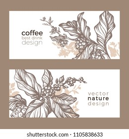 Vector sketch of coffee packaging. Nature realistic organic template with leaves, flower, bean . Art hand drawing floral illustration on white background. Botanical doodle label, print, card Eco food