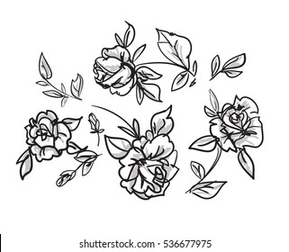 vector sketch flowers