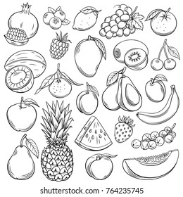 Vector sketch fruits and berries icons set. Decorative retro style collection hand drawn farm product for restaurant menu, market label. Mango, blueberry, pineapple, mandarin and etc.