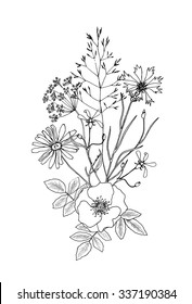 Vector sketch illustration of bouquet of flowers