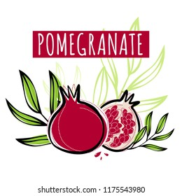 Vector sketch pomegranate fruit decorated with leaves. Hand drawn vector illustration for labels, restaurant menu, market label or package or another design