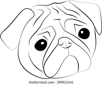Vector sketch of  pug-dog