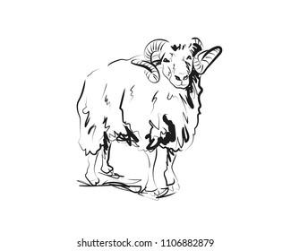 Vector sketch of ram