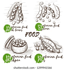 Vector sketch set with monochrome peas on white background. Healthy vegetarian food. Vintage collection for decoration design. Black beans, soybean, chickpea and peas.