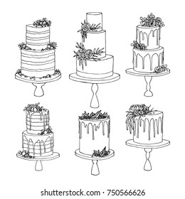 Vector sketch of trending wedding cakes with floral and fruit decoration isolated on a white