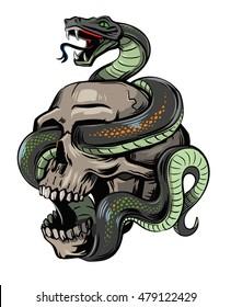 vector skull with snake on white background