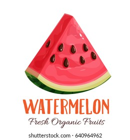 Vector slice watermelon. Fruit illustration for farm market menu. Healthy food design
