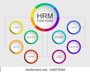 Vector slide template with circle diagram. Human resources management or HRM functions diagram scheme: planning recruitment selection placement training performance management compensation career plan