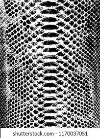 Vektor-Schlangen-Hauthintergrund