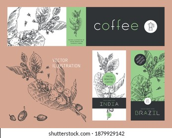 Vector specialty coffee package. Fresh roasted coffee label template design with branch illustration of coffee beans in engraved style. Retro badge for cafe. Vintage coffee house banner in vector.