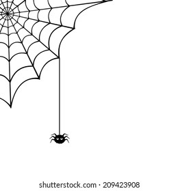 Vector spider web and small spider on a white background.