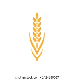 Vector Spikelet isolated on white background. Spica plant. Wheat, rice, rye ear, symbol of farming, bread, harvest