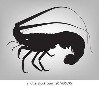 Vector spiny lobster or rock lobster silhouette on simple grey background