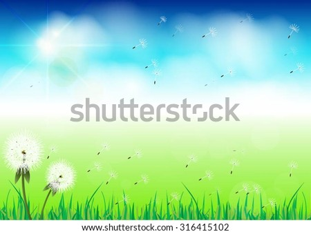 b2fb005a34233 Vector Spring Background White Dandelion Stock Vector (Royalty Free ...