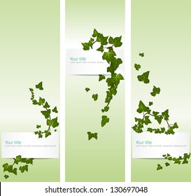 Vector spring banners with ivy leaves