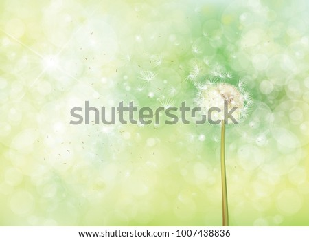 5e0c64e39eca2 Vector Spring Bokeh Background White Dandelion Stock Vector (Royalty ...