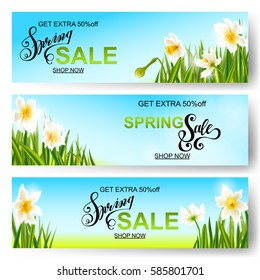 Vector spring sale background, horizontal banner with daffodils flowers.