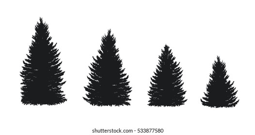 Vector spruce silhouettes isolated on white background