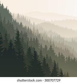Vector square landscape of wild coniferous forest in morning fog in dark green tone.