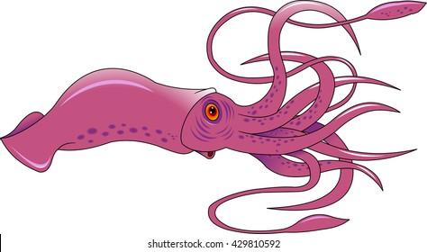 Vector Squid cartoon marine illustration. Vector Squid water ocean design