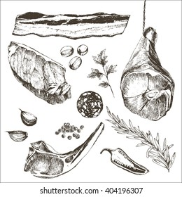 vector steak meat hand drawing with pepper and rosemary. detailed ink food illustration. parma ham drawing. lamb rib drawing. sirloin steak drawing. salami slice. bacon slice