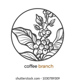 Outline Of The Coffee Bean Images Stock Photos Vectors