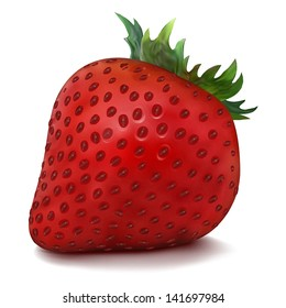 Vector Strawberry isolated on white background. Juicy red.