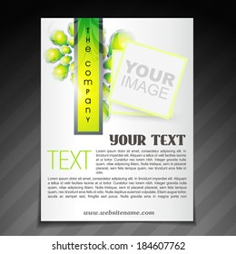 vector stylish company brochure flyer poster templates