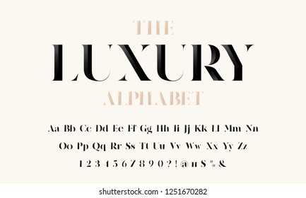Vector of stylized modern luxury font and alphabet