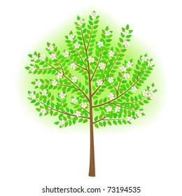 vector stylized tree