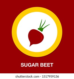 vector sugar Beet illustration isolated - healthy vegetable, nutrition icon - veggie food, vector beetroot