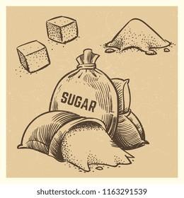 Vector sugar of collection. Sketch vintage style sack sugar illustration