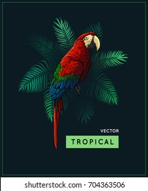 Vector summer design and vintage style jungle illustration with tropical palm tree and parrot - exotic bird isolated on dark background, closeup