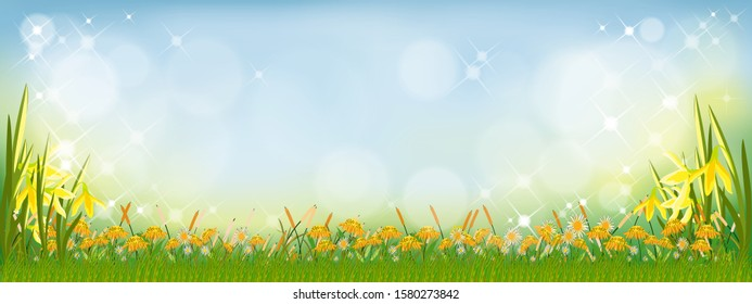 Vector summer nature background with sunflowers and daffodils flowers and green grass fields. Spring background with abstract blurry bokeh light effect. Tamplate banner for Easter or Spring background