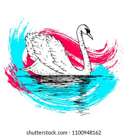 Vector swan illustration with reflection and abstract watercolor paint splash. Swimming elegant swan bird, beautiful wild nature sketch. Royal swan ink outline illustration, hand drawn animal.