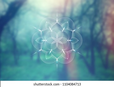 "Vector template of banner, horizontal format; Spiritual sacred geometry; ""Flower of life"" and lotus on psychedelic natural forest photographic background; Yoga, meditation and relax."