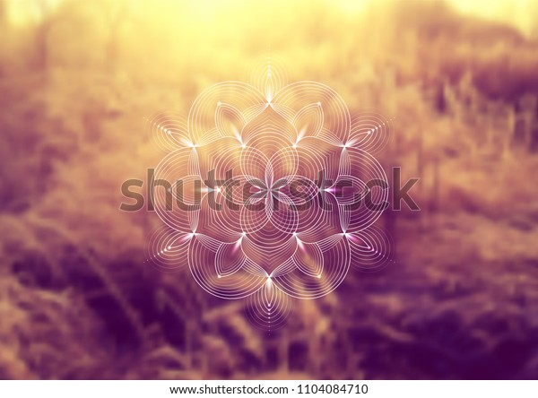 """Vector template of banner, horizontal format; Spiritual sacred geometry; """"Flower of life"""" and lotus on psychedelic natural forest photographic background; Yoga, meditation and relax."""