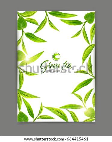 vector template frame green tea leaves のベクター画像素材