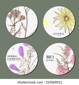 Vector template Label with hand-draw wild flowers and herbs. Layout/ Mockup design for beauty salon, spa, cosmetics, store, label, natural and organic products